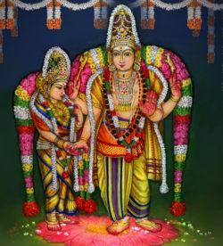 SRI ARUL VALANATHASWAMI(SIVA) ANNAI SRI KOKILAMBAL(SAKTHI)